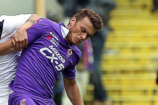 Ljajic, Fiorentina, Liverpool, Suarez,Rodgers,