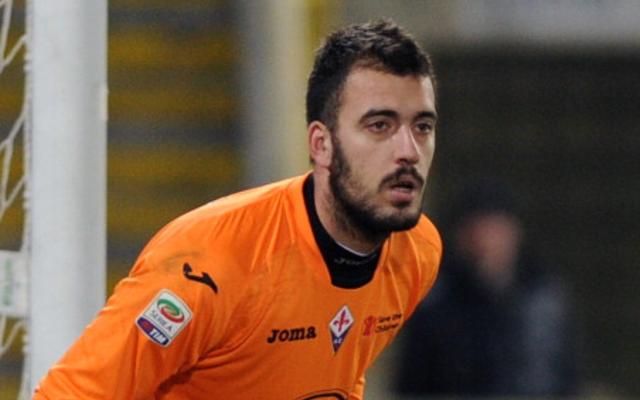 Viviano, Arsenal, Palermo, Serie B,